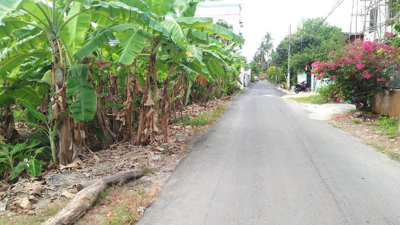 Land  Thoet Thai Road, Phasi Charoen, Bangkok.