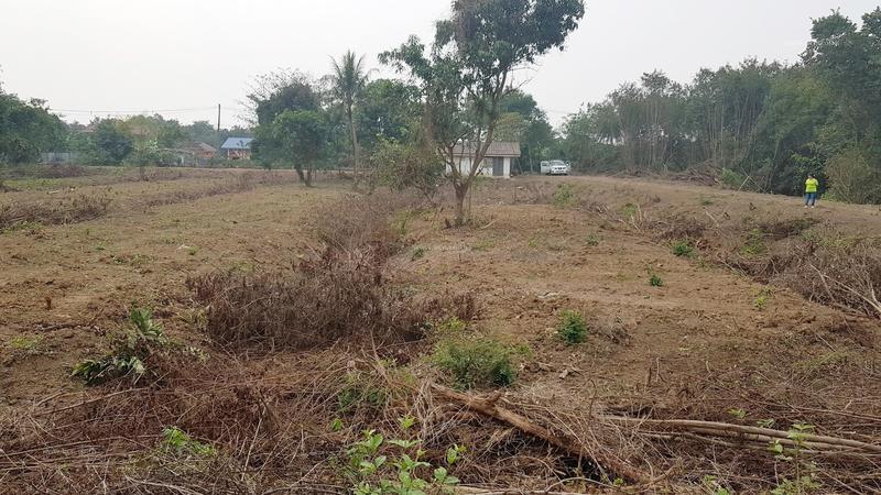 Agricultural Land Soi Ruamchai 2, Sam Khok-Pathumthani Road, Ban Ngio, Sam Khok, Pathum Thani